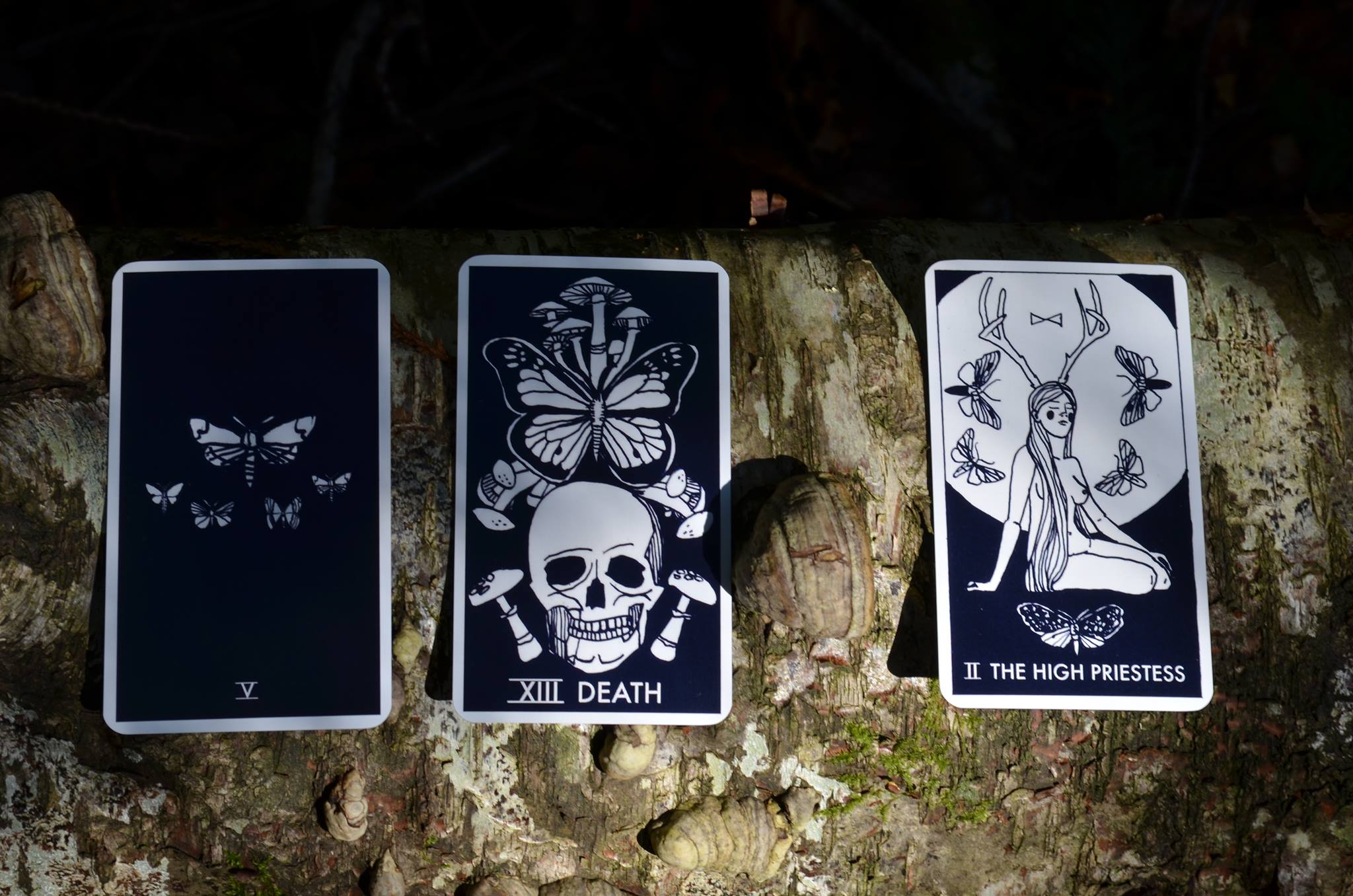 Cards laid out from the Nomad Tarot