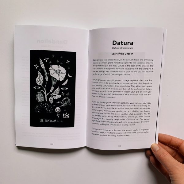 The Dirt Gems Oracle guidebook, held open on the page for Datura